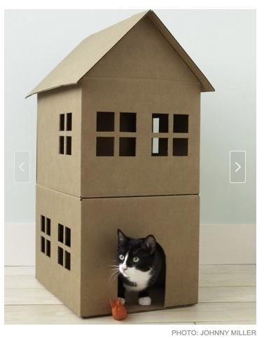Ein Haus für Bernd