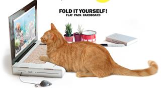Für Nerd-Katzen