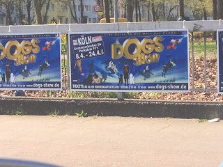 Die Dogs Show