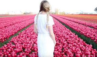 Barefoot Blonde – Travel Diary: Amsterdam and Ireland