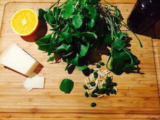 Zutaten Portulak Postelein Pesto Pinienkerne Pistazien Olivenöl Parmesan Orange