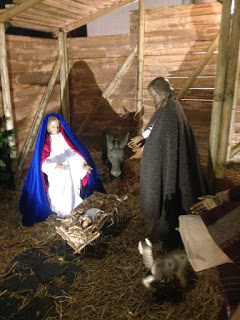 Weihnachtskrippe in der Agneskirche mit Jesus, Josef, Maria, Ochse, Esel, Hirten, Schafen und Ziegen