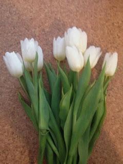 Weiße Tulpen: Frühling!