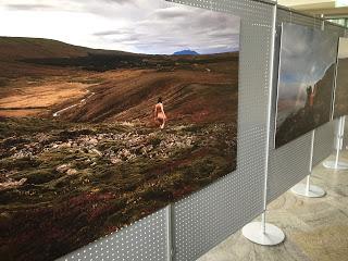 Ausstellung Icelandskin von Anne Moldenhauer im KulturFoyer Bad Marienberg Foto