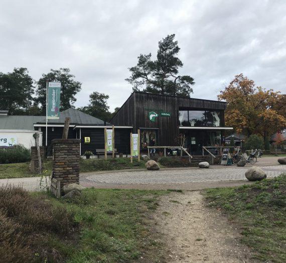 Ausflug mit Kindern: Das Naturkundemuseum Holterberg