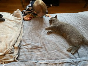 Kinde mit Katze