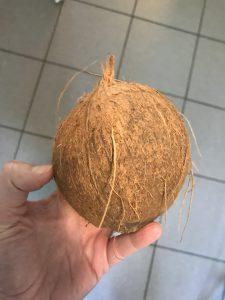 Kokosnuss Biokiste