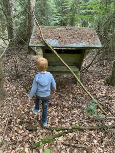Kind Wald Bienenstock