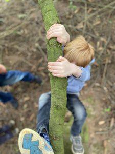 Kind Klettert Baum